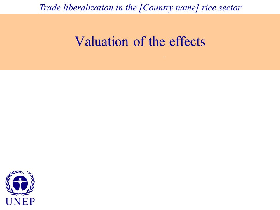 Valuation of the effects. Trade liberalization in the [Country name] rice sector