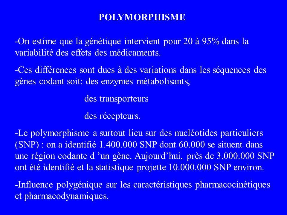 POLYMORPHISME -On estime que la génétique intervient pour 20 à 95% dans la variabilité des effets des médicaments. -Ces différences sont dues à des va