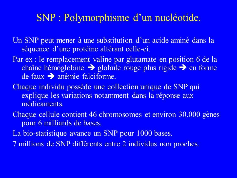 SNP : Polymorphisme dun nucléotide. Un SNP peut mener à une substitution dun acide aminé dans la séquence dune protéine altérant celle-ci. Par ex : le