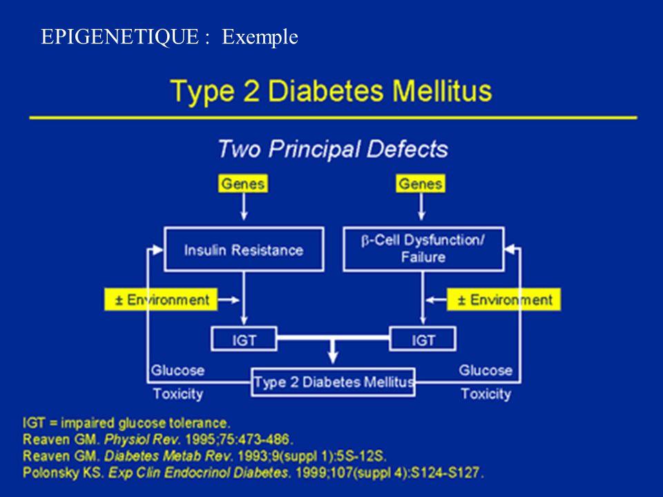 Génotype TT et passage placentaire.Le génotype maternel régule (foie) le métabolisme des médic.