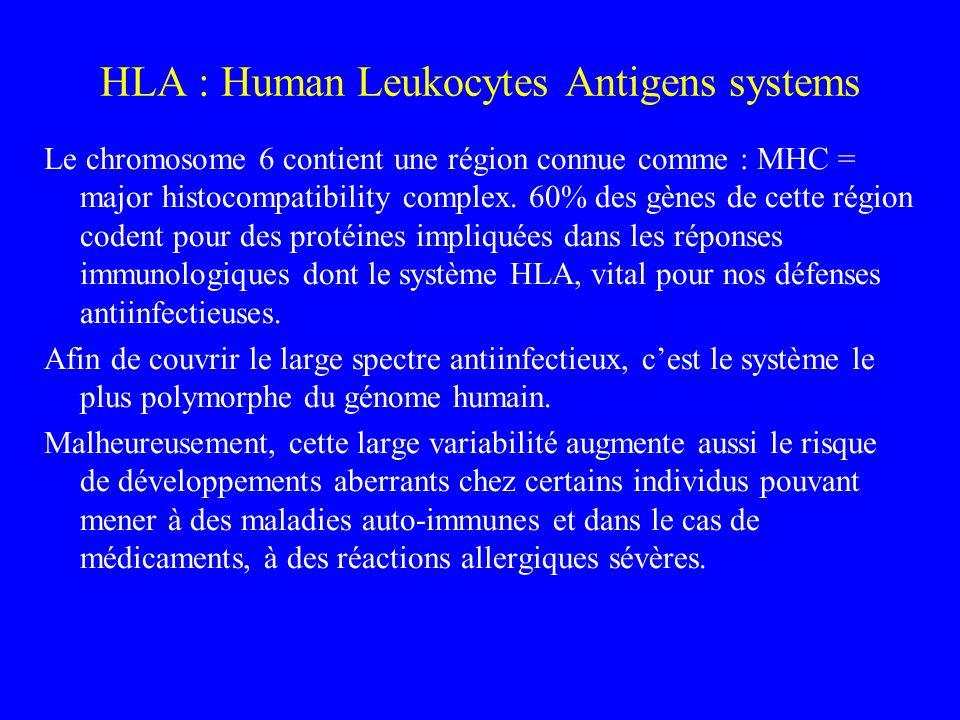 HLA : Human Leukocytes Antigens systems Le chromosome 6 contient une région connue comme : MHC = major histocompatibility complex. 60% des gènes de ce