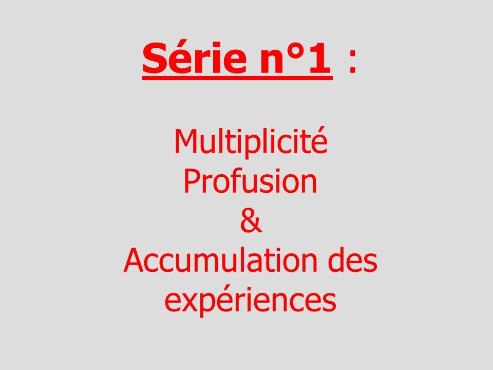 Série n°1 : Multiplicité Profusion & Accumulation des expériences