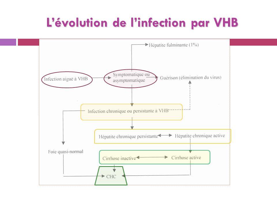 Lévolution de linfection par VHB