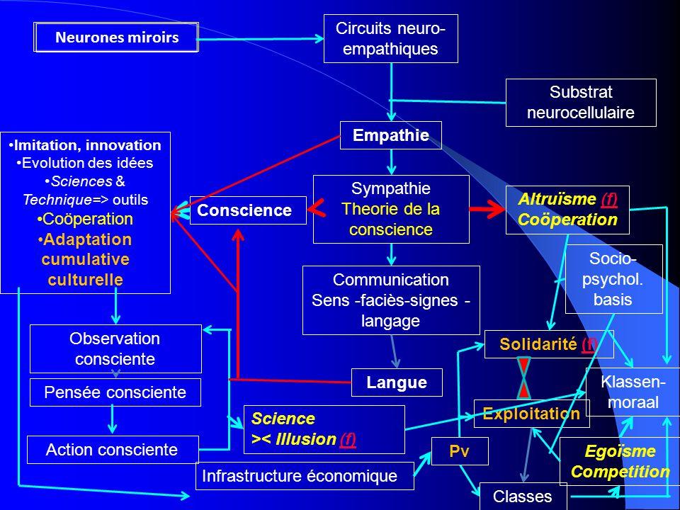 Neurones miroirs Circuits neuro- empathiques Empathie Substrat neurocellulaire Sympathie Theorie de la conscience Altruïsme (f)(f) Coöperation Communi