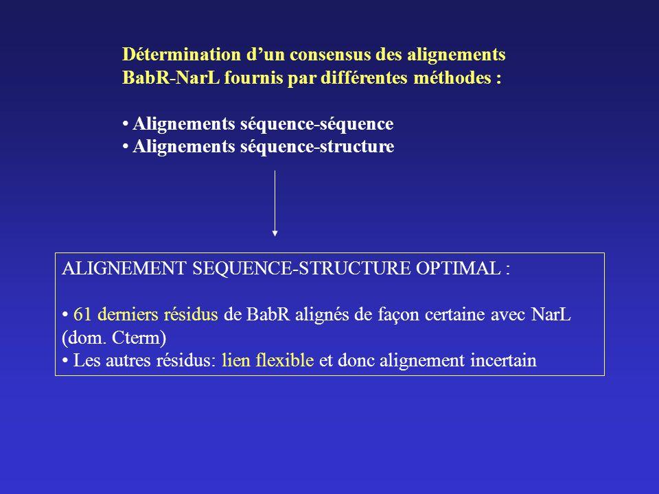 Détermination dun consensus des alignements BabR-NarL fournis par différentes méthodes : Alignements séquence-séquence Alignements séquence-structure ALIGNEMENT SEQUENCE-STRUCTURE OPTIMAL : 61 derniers résidus de BabR alignés de façon certaine avec NarL (dom.