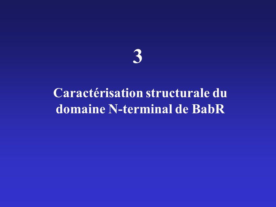 Caractérisation structurale du domaine N-terminal de BabR 3