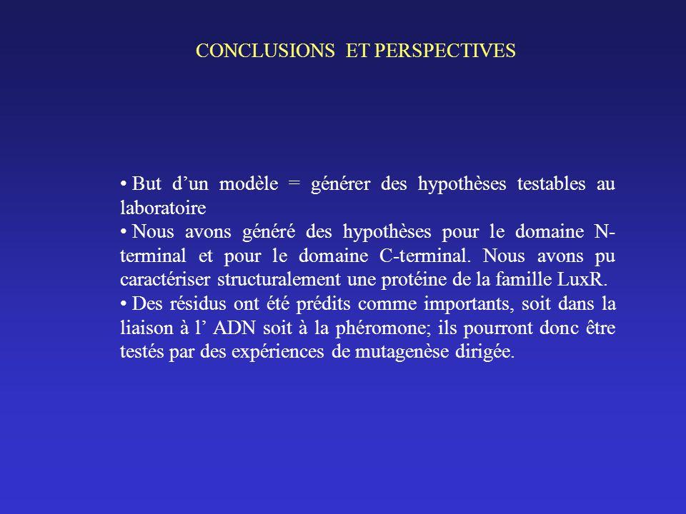 CONCLUSIONS ET PERSPECTIVES But dun modèle = générer des hypothèses testables au laboratoire Nous avons généré des hypothèses pour le domaine N- terminal et pour le domaine C-terminal.