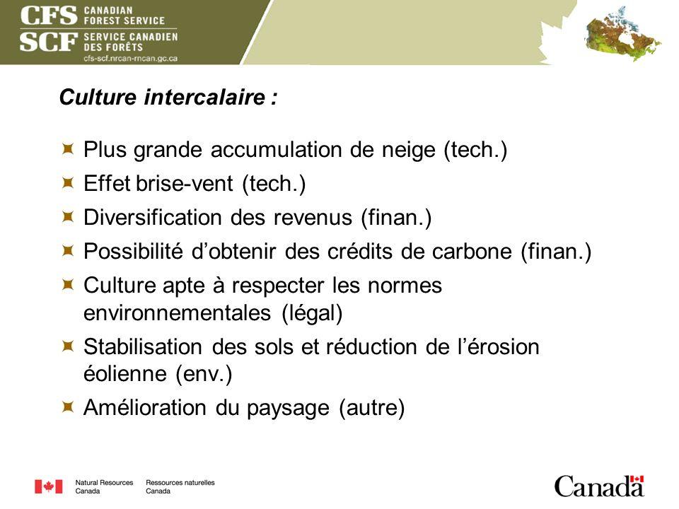 Culture intercalaire : Plus grande accumulation de neige (tech.) Effet brise-vent (tech.) Diversification des revenus (finan.) Possibilité dobtenir de