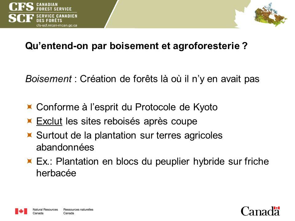 Quentend-on par boisement et agroforesterie ? Boisement : Création de forêts là où il ny en avait pas Conforme à lesprit du Protocole de Kyoto Exclut