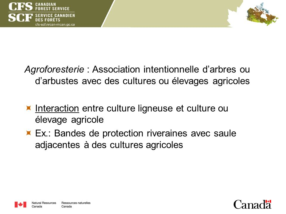Agroforesterie : Association intentionnelle darbres ou darbustes avec des cultures ou élevages agricoles Interaction entre culture ligneuse et culture