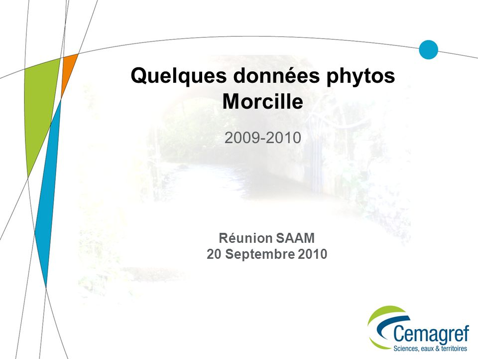 Quelques données phytos Morcille 2009-2010 Réunion SAAM 20 Septembre 2010