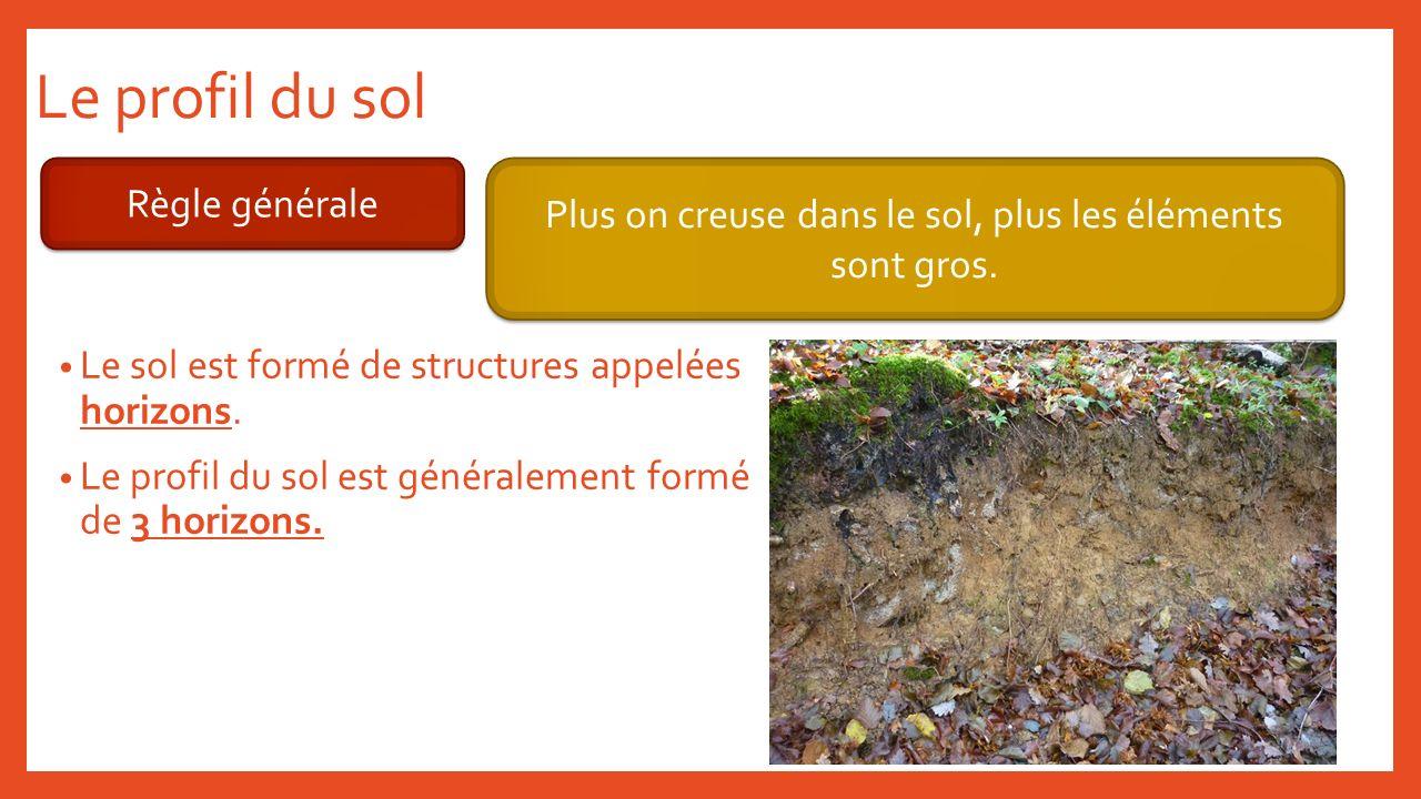 Le profil du sol Règle générale Plus on creuse dans le sol, plus les éléments sont gros. Le sol est formé de structures appelées horizons. Le profil d
