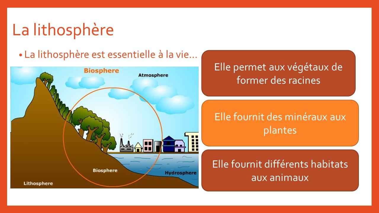 La lithosphère La lithosphère est essentielle à la vie… Elle permet aux végétaux de former des racines Elle fournit des minéraux aux plantes Elle four