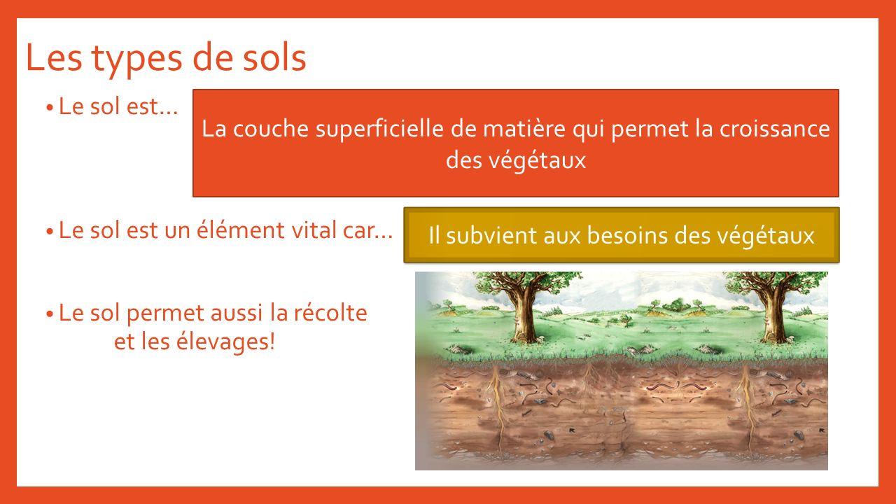 Les types de sols Le sol est… Le sol est un élément vital car… Le sol permet aussi la récolte et les élevages! La couche superficielle de matière qui