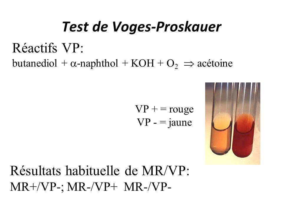 Test de Voges-Proskauer VP + = rouge VP - = jaune Résultats habituelle de MR/VP: MR+/VP-; MR-/VP+ MR-/VP- Réactifs VP: butanediol + -naphthol + KOH +
