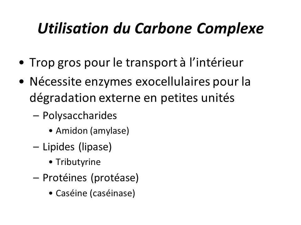 Utilisation du Carbone Complexe Trop gros pour le transport à lintérieur Nécessite enzymes exocellulaires pour la dégradation externe en petites unité