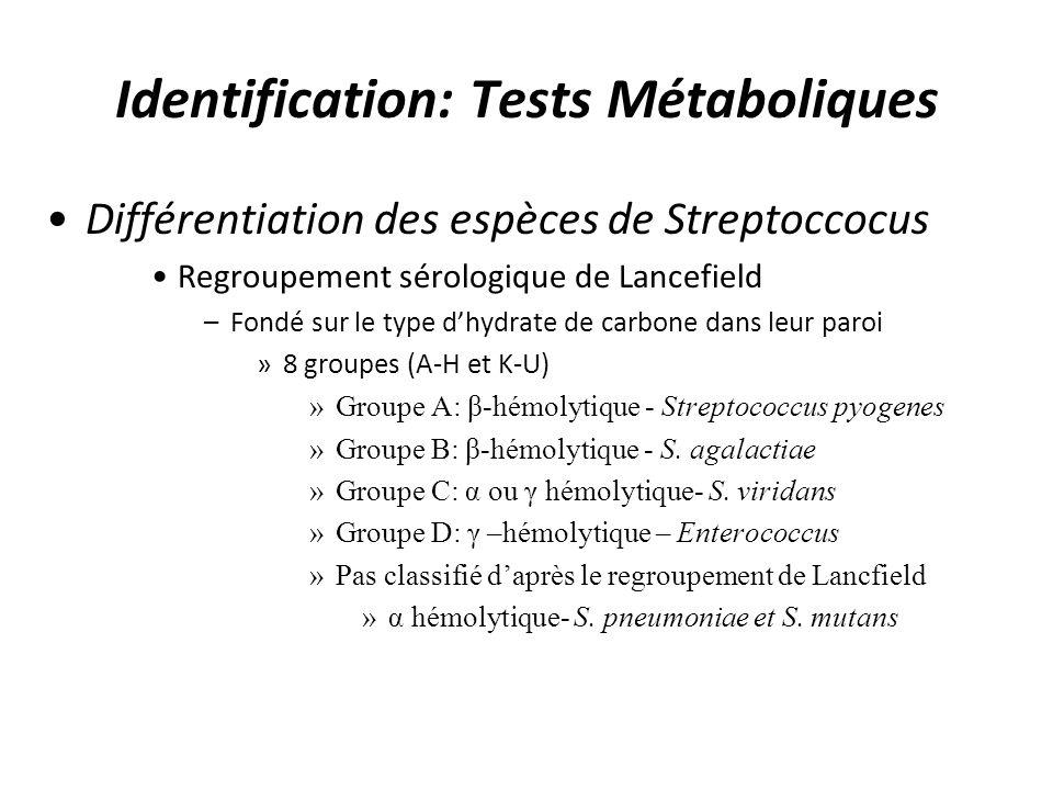Identification: Tests Métaboliques Différentiation des espèces de Streptoccocus Regroupement sérologique de Lancefield –Fondé sur le type dhydrate de