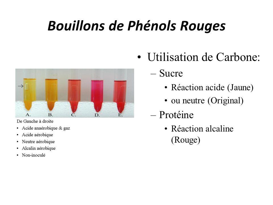 Bouillons de Phénols Rouges Utilisation de Carbone: –Sucre Réaction acide (Jaune) ou neutre (Original) –Protéine Réaction alcaline (Rouge)