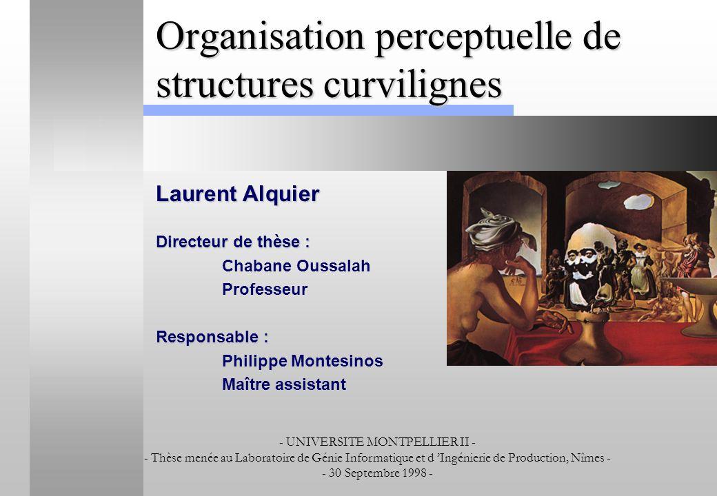 Organisation perceptuelle de structures curvilignes Laurent Alquier Directeur de thèse : Chabane Oussalah Professeur Responsable : Philippe Montesinos
