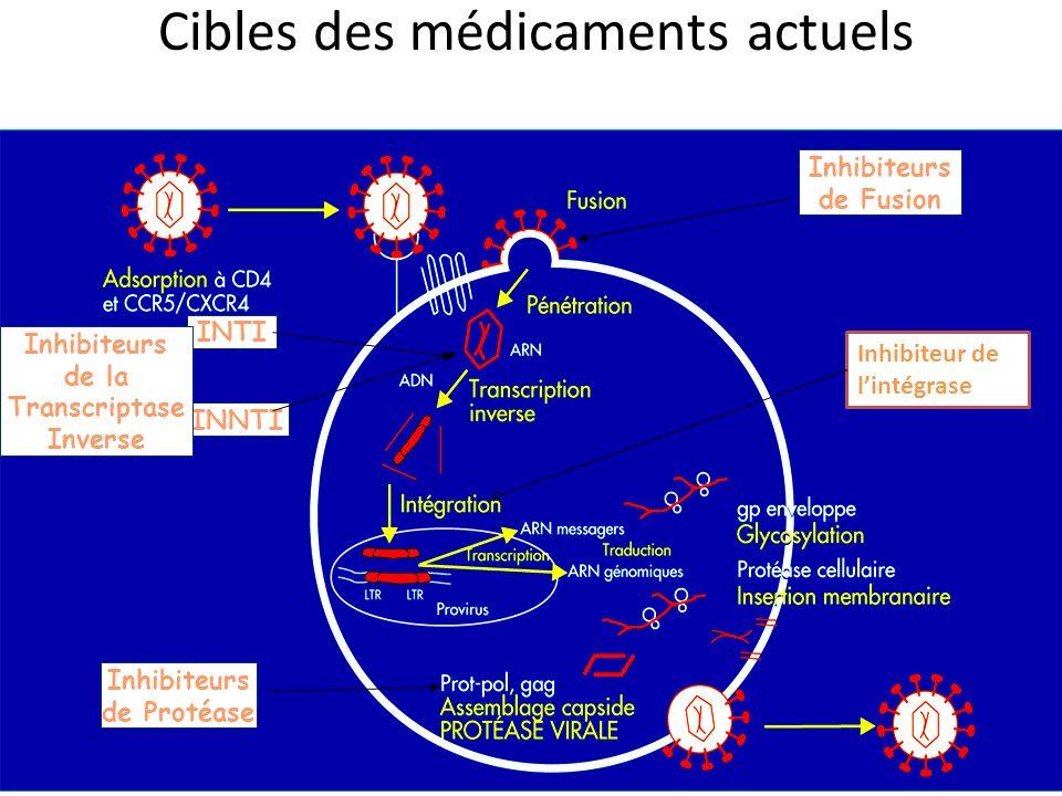 Cibles des médicaments actuels INTI INNTI Inhibiteurs de Fusion Inhibiteurs de Protéase Inhibiteurs de la Transcriptase Inverse Inhibiteur de lintégra