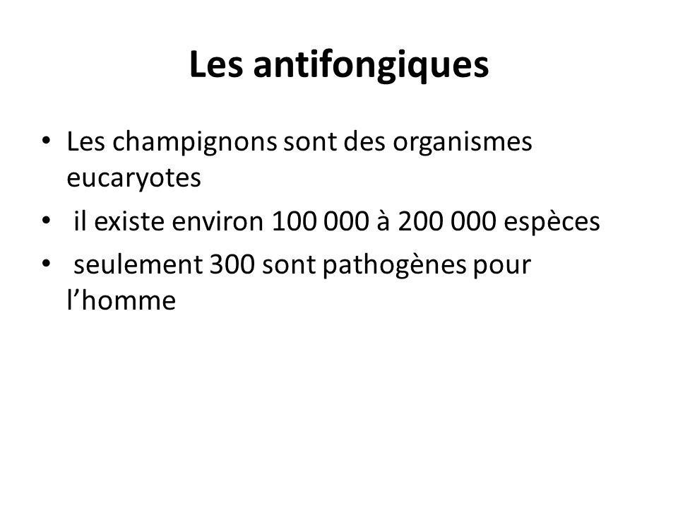 Les antifongiques Les champignons sont des organismes eucaryotes il existe environ 100 000 à 200 000 espèces seulement 300 sont pathogènes pour lhomme