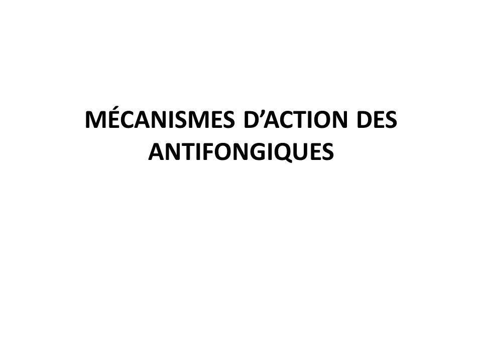 MÉCANISMES DACTION DES ANTIFONGIQUES