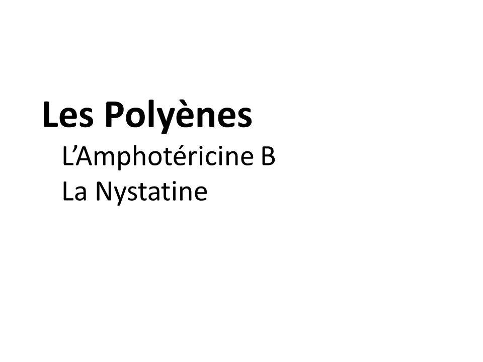 Les Polyènes LAmphotéricine B La Nystatine
