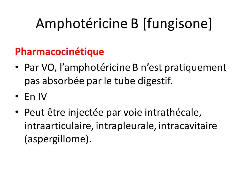 Amphotéricine B [fungisone] Pharmacocinétique Par VO, lamphotéricine B nest pratiquement pas absorbée par le tube digestif. En IV Peut être injectée p