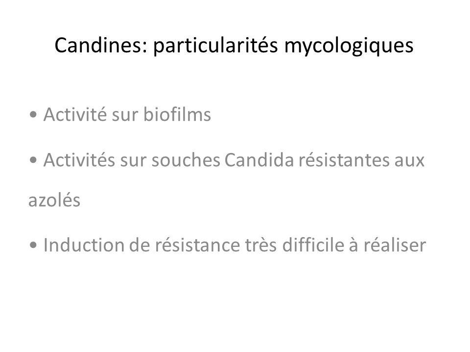 Candines: particularités mycologiques Activité sur biofilms Activités sur souches Candida résistantes aux azolés Induction de résistance très difficil