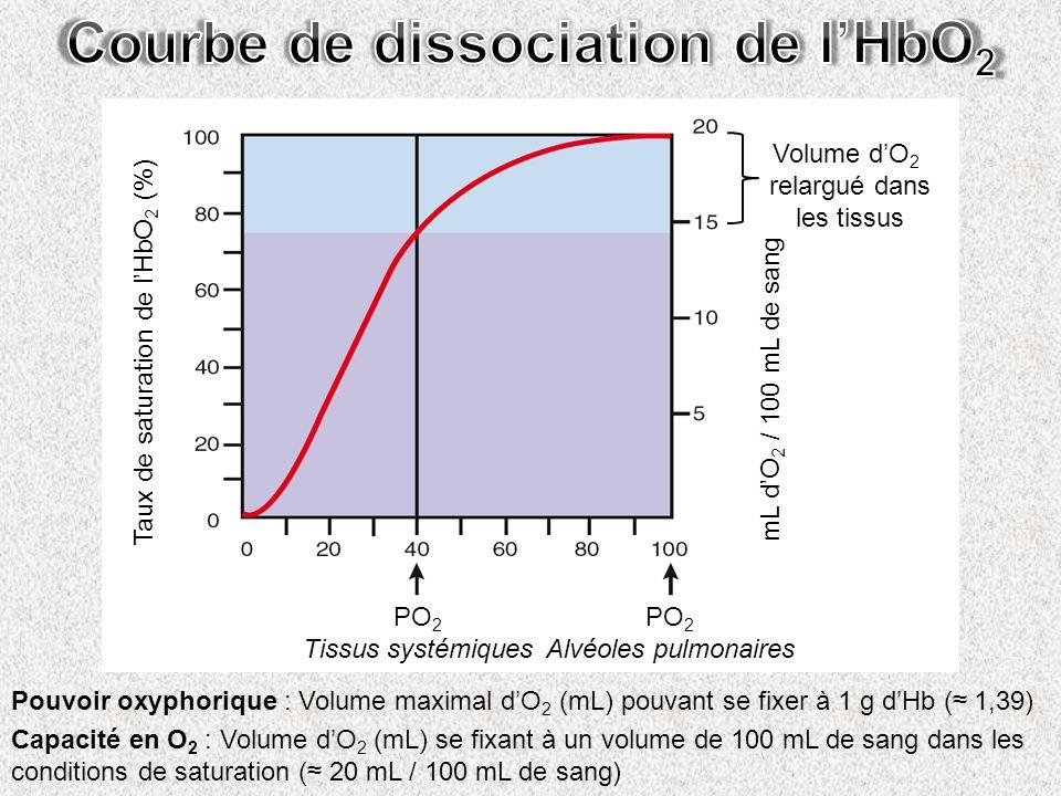 Taux de saturation de lHbO 2 (%) mL dO 2 / 100 mL de sang PO 2 Tissus systémiques PO 2 Alvéoles pulmonaires Volume dO 2 relargué dans les tissus Pouvo