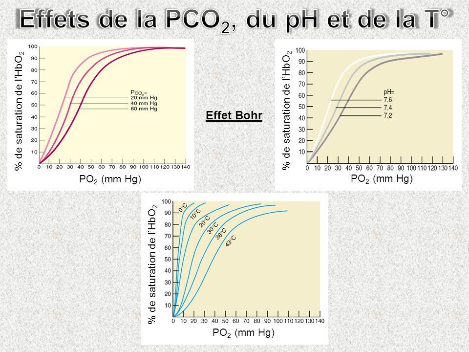 Effet Bohr PO 2 (mm Hg) % de saturation de lHbO 2 PO 2 (mm Hg) % de saturation de lHbO 2 PO 2 (mm Hg) % de saturation de lHbO 2