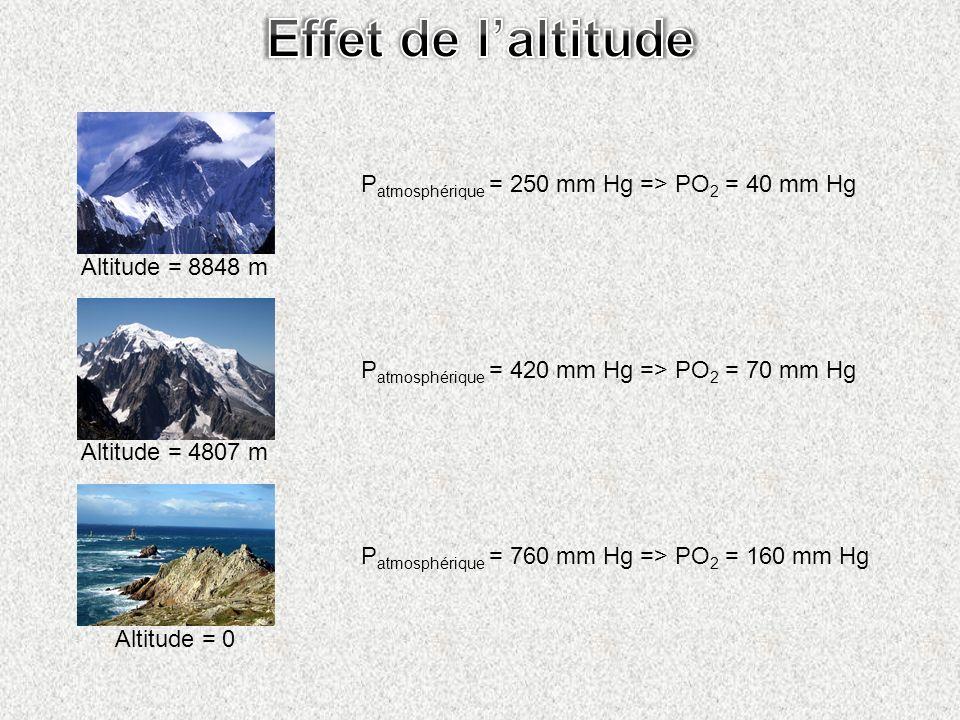 Altitude = 0 Altitude = 4807 m Altitude = 8848 m P atmosphérique = 760 mm Hg => PO 2 = 160 mm Hg P atmosphérique = 420 mm Hg => PO 2 = 70 mm Hg P atmo