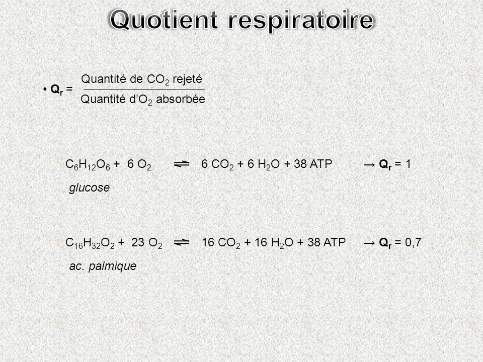 Q r = Quantité de CO 2 rejeté Quantité dO 2 absorbée C 6 H 12 O 6 + 6 O 2 6 CO 2 + 6 H 2 O + 38 ATP C 16 H 32 O 2 + 23 O 2 16 CO 2 + 16 H 2 O + 38 ATP