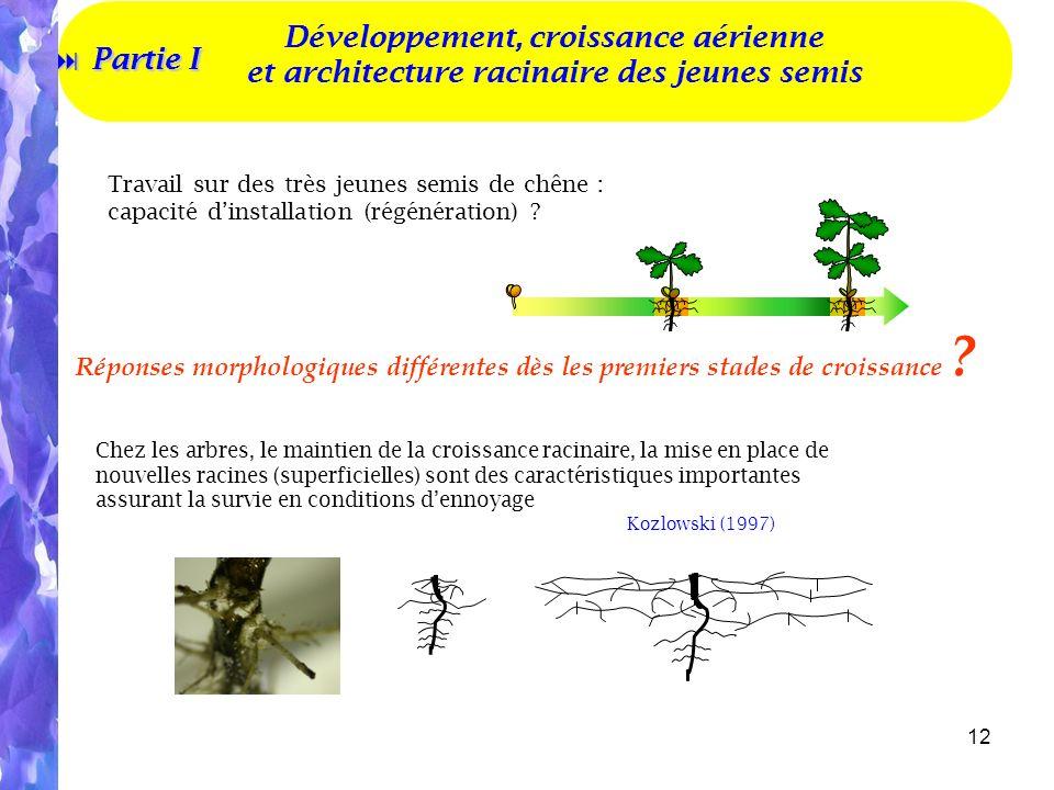 12 Travail sur des très jeunes semis de chêne : capacité dinstallation (régénération) .