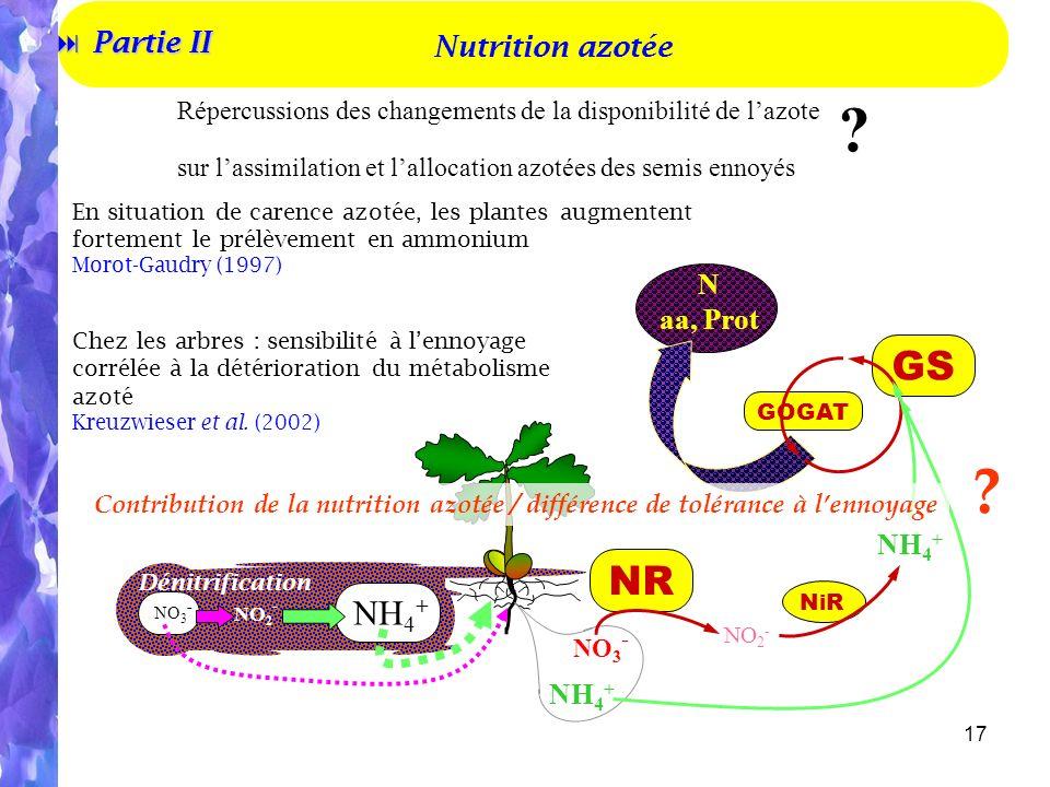 17 N aa, Prot GOGAT GS Répercussions des changements de la disponibilité de lazote sur lassimilation et lallocation azotées des semis ennoyés .