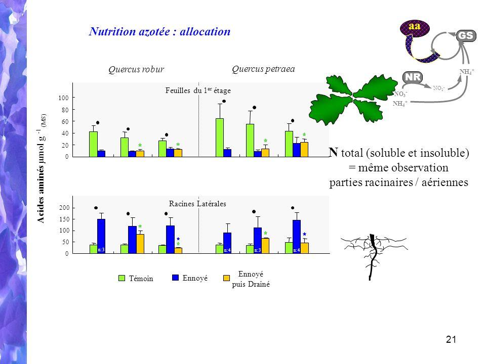21 Quercus robur Quercus petraea 0 50 100 150 200 Racines Latérales n:3 n:4 aa GS NH 4 + NO 2 - NR NO 3 - NH 4 + Nutrition azotée : allocation Témoin Ennoyé puis Drainé Acides aminés µmol g - 1 (MS) 0 20 40 60 80 100 Feuilles du 1 er étage N total (soluble et insoluble) = même observation parties racinaires / aériennes
