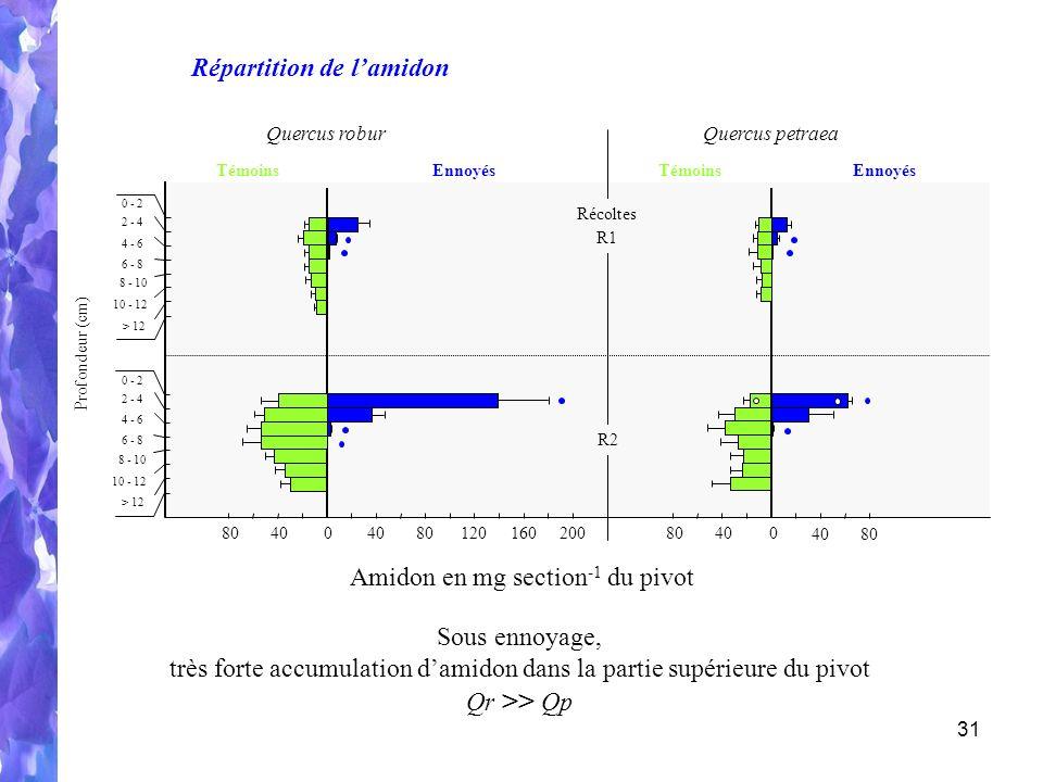 31 R2 R1 Récoltes Profondeur (cm) 10 - 12 0 - 2 2 - 4 4 - 6 6 - 8 8 - 10 > 12 10 - 12 0 - 2 2 - 4 4 - 6 6 - 8 8 - 10 > 12 0 8040 80120160200 0 8040 80 TémoinsEnnoyés Quercus roburQuercus petraea TémoinsEnnoyés Amidon en mg section -1 du pivot Répartition de lamidon Sous ennoyage, très forte accumulation damidon dans la partie supérieure du pivot Qr >> Qp