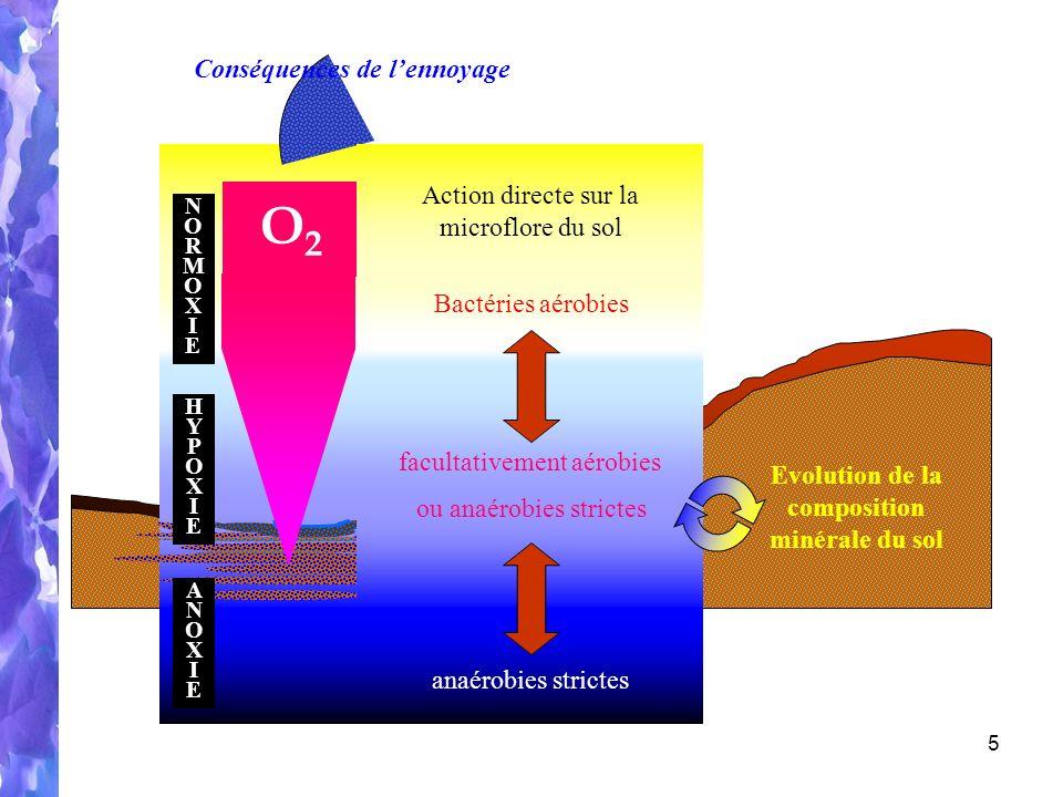 5 Déficit en oxygène Le sol = 3 compartiments O2O2 ANOXIEANOXIE HYPOXIEHYPOXIE NORMOXIENORMOXIE Action directe sur la microflore du sol Evolution de la composition minérale du sol Bactéries aérobies facultativement aérobies anaérobies strictes ou anaérobies strictes Conséquences de lennoyage