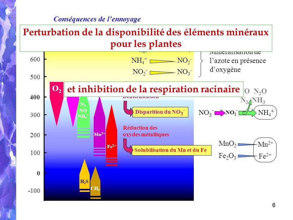 6 Eh (mV) 400 0 200 600 300 500 100 -100 O2O2 N 2 NO NH 4 + NO 3 - Réduction des oxydes métalliques Solubilisation du Mn et du Fe NO 3 - NH 4 + NO 2 - NO N 2 O N 2 NH 3 Fe 2+ Mn 2+ Dénitrification Disparition du NO 3 - H2SH2S CH 4 NO 2 - NO 3 - NH 4 + Minéralisation de lazote en présence doxygène NH 4 + N orga NO 2 - MnO 2 Fe 2 O 3 Mn 2+ Fe 2+ et inhibition de la respiration racinaire Perturbation de la disponibilité des éléments minéraux pour les plantes Conséquences de lennoyage
