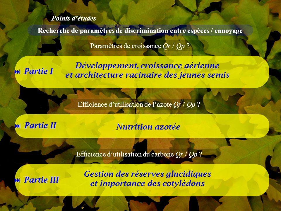 8 Partie I Partie II Partie III Développement, croissance aérienne et architecture racinaire des jeunes semis Nutrition azotée Gestion des réserves glucidiques et importance des cotylédons Points détudes Recherche de paramètres de discrimination entre espèces / ennoyage Paramètres de croissance Qr / Qp .