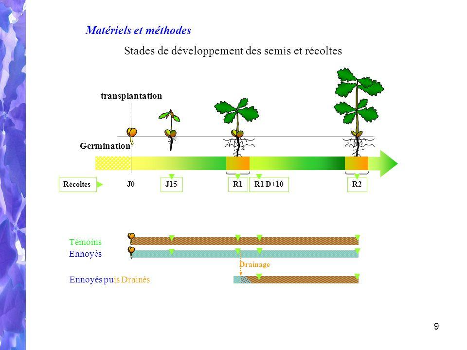 9 Témoins Ennoyés Germination Récoltes J15R1 D+10 R1R2 J0 transplantation Matériels et méthodes Stades de développement des semis et récoltes Ennoyés puis Drainés Drainage
