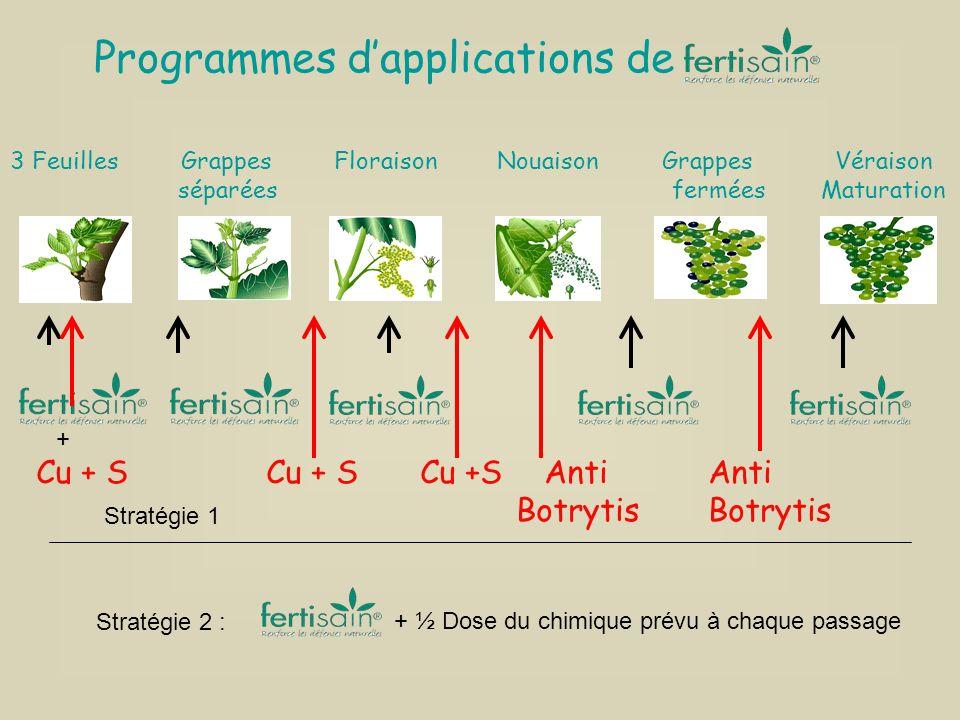 3 Feuilles Grappes Floraison Nouaison Grappes Véraison séparées fermées Maturation + Cu + S Cu + SCu +S Anti AntiBotrytis Programmes dapplications de