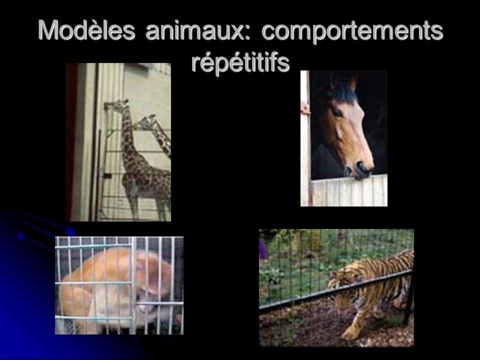 Modèles animaux: comportements répétitifs
