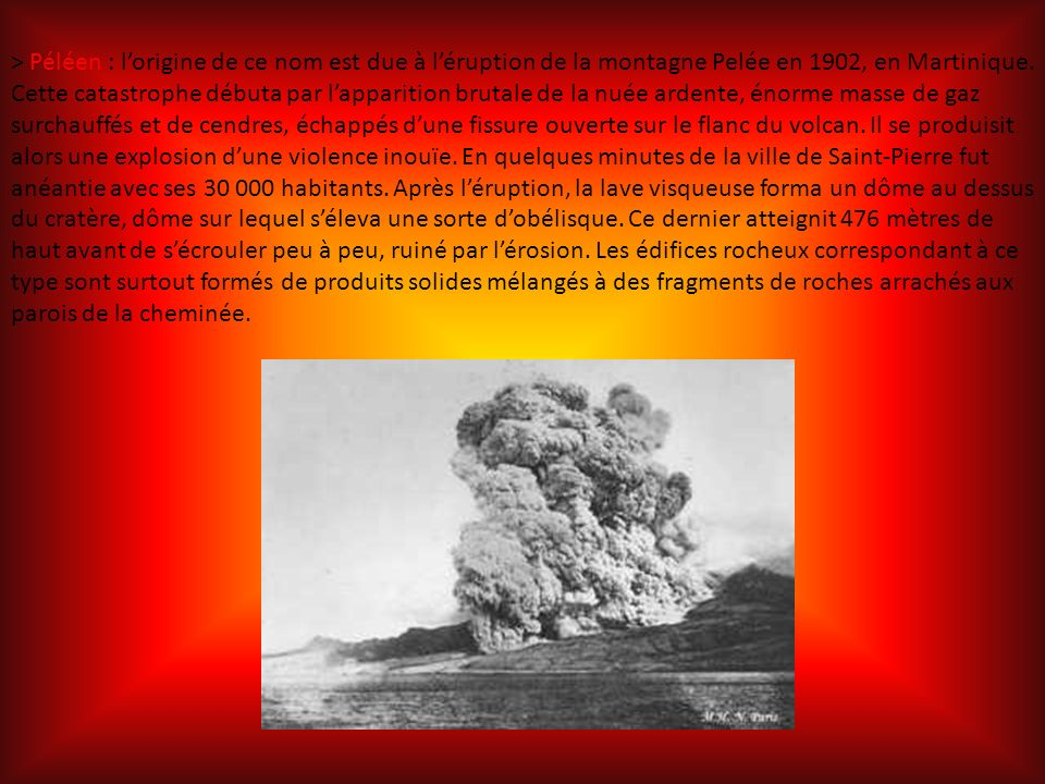 > Péléen : lorigine de ce nom est due à léruption de la montagne Pelée en 1902, en Martinique.
