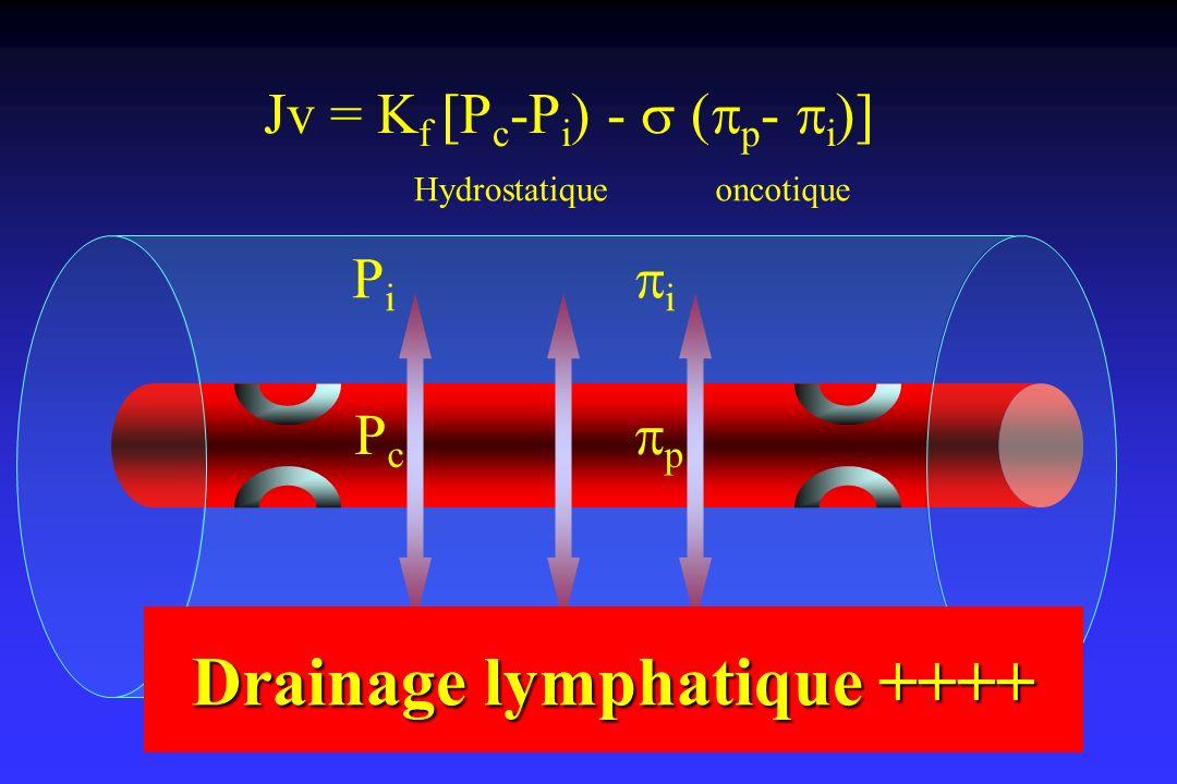 Jv = K f [P c -P i ) - ( p - i )] PcPc p PiPi i Hydrostatiqueoncotique Drainage lymphatique ++++