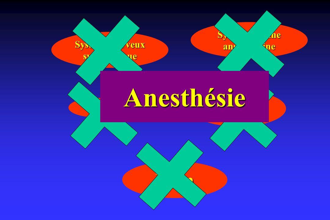 Rein Système nerveux sympathique Système rénine angiotensine NAf Hormone antidiurétique Anesthésie