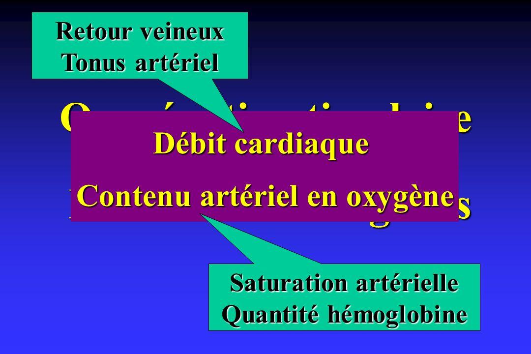 Oxygénation tissulaire Perfusion des organes Débit cardiaque Contenu artériel en oxygène Retour veineux Tonus artériel Saturation artérielle Quantité