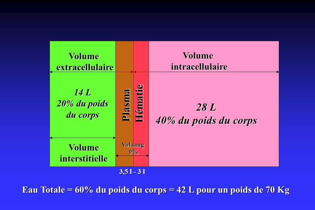 Eau Totale = 60% du poids du corps = 42 L pour un poids de 70 Kg Volumeextracellulaire Volumeinterstitielle 14 L 20% du poids du corps Volumeintracell