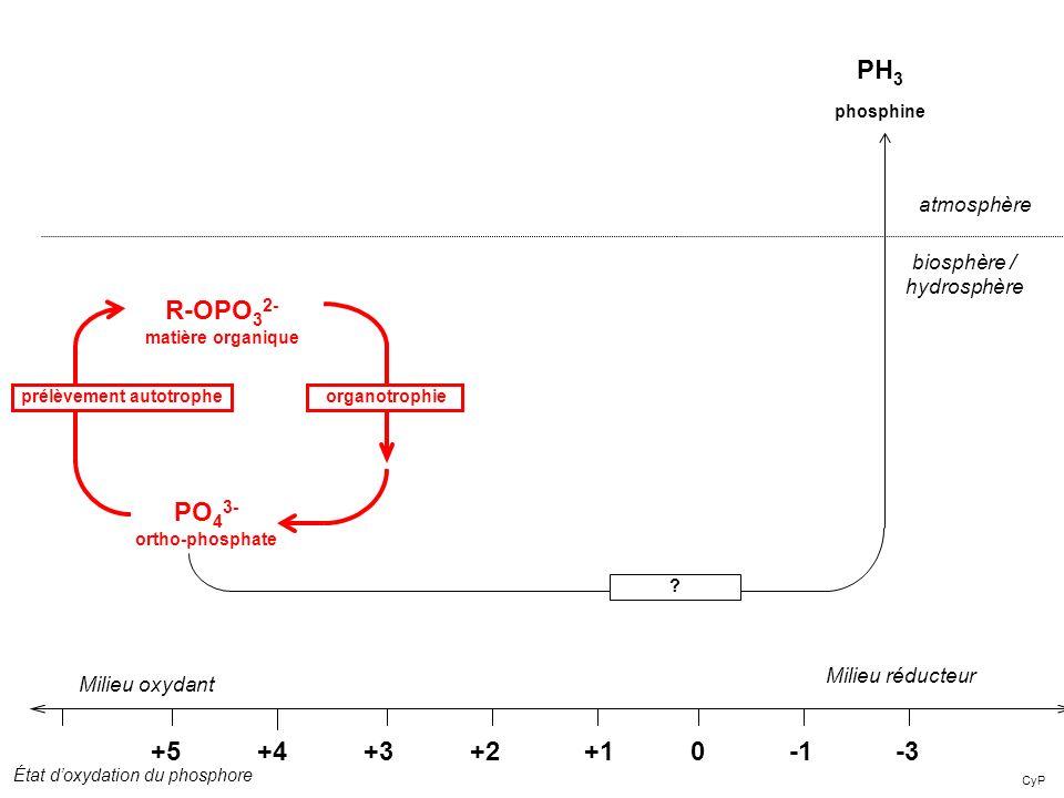 CyP +5 +4 +3 +2 +1 0 -1-3 Milieu réducteur R-OPO 3 2- matière organique Milieu oxydant atmosphère biosphère / hydrosphère État doxydation du phosphore