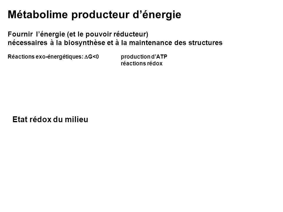 Etat rédox du milieu Red i Ox i + n e - E = E° Red i /Ox i + RT/nF ln (Ox i /Red i ) V ½ H 2 H + + e - Électrode de référence E=0 à pH0 H 2 /H + - 0.42 V CH 4 /CO 2 - 0.27 HS - /SO 4 -- - 0.22 Fe ++ /Fe +++ + 0.11 NH 4 + /NO 3 - + 0.35 Mn ++ /MnO 2 + 0.57 H 2 O/O 2 + 0.82 NADH/NAD + - 0.32 V Tendance dun couple redox à agir comme oxydant (à accepter des électrons)